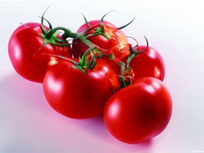 untitled西紅柿