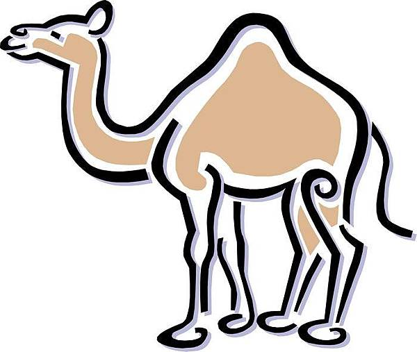 untitled駱駝