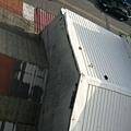 更上一層屋頂的小貓.jpg