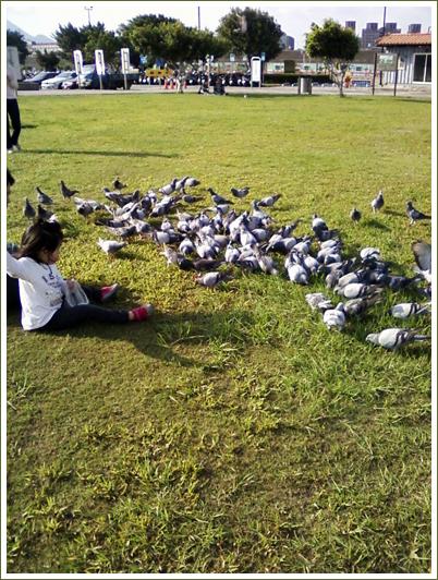 22餵鴿子.jpg