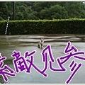 Nana013.jpg