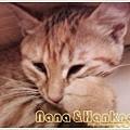 Nana034.jpg