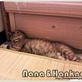 Nana043.jpg