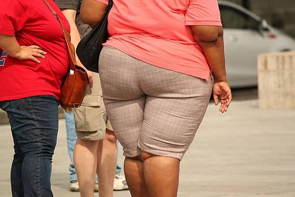 探究律動減肥