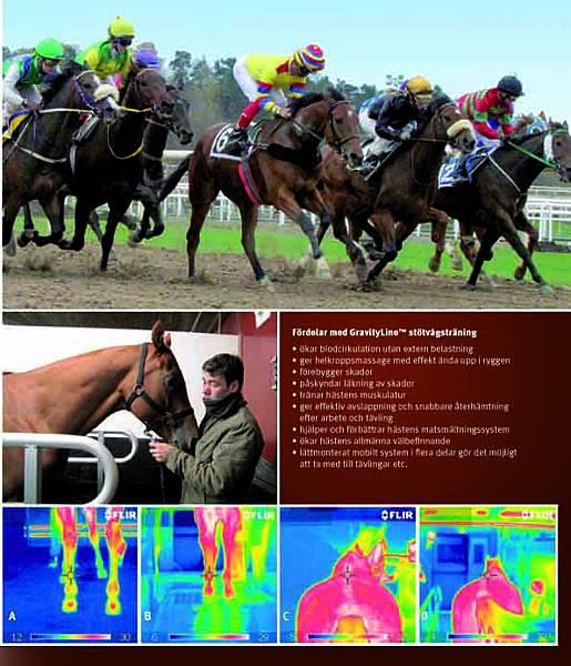 【瑞典】賽馬爆發力及肌力訓練研究報告
