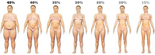 body-fat-levels-women.jpg