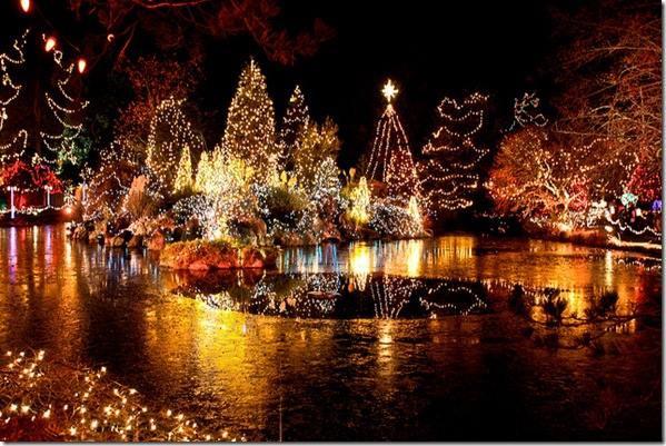 藍海聖誕活動 - VanDusen Garden Festival of Light