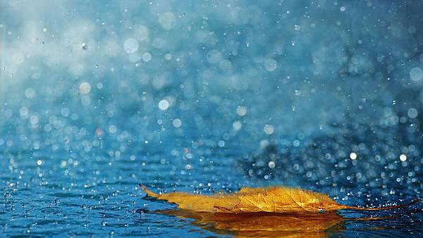 雨2.jpg