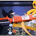 胡蘿蔔茶摘野獅03