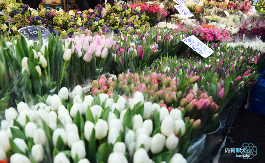 Columbia Road Flower Market.哥倫比亞花市
