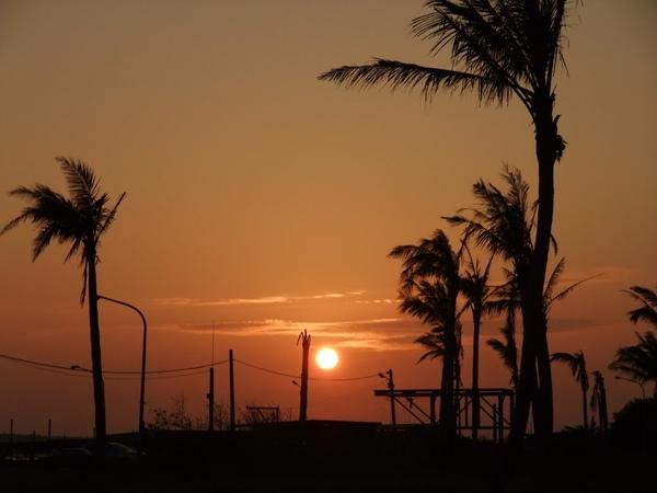 2009-1-29 下午 05-29-43.JPG