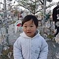 2009-1-29 下午 05-25-25.JPG