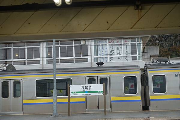 DSC07555.JPG
