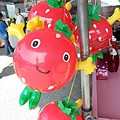 20120212大湖採草莓 025.jpg