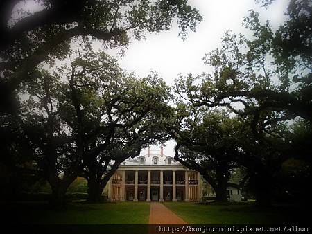 201312oakalleyplantation6.jpg