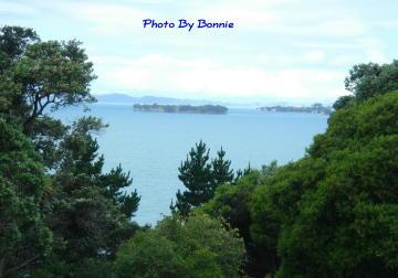 紐西蘭愛情島-1