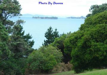 紐西蘭愛情島-8
