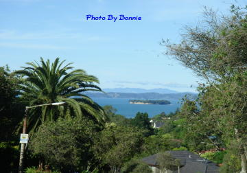 紐西蘭愛情島-10