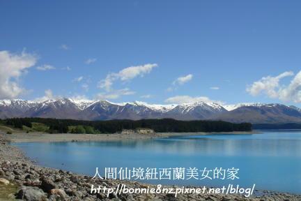 紐西蘭LakeTekapo-5