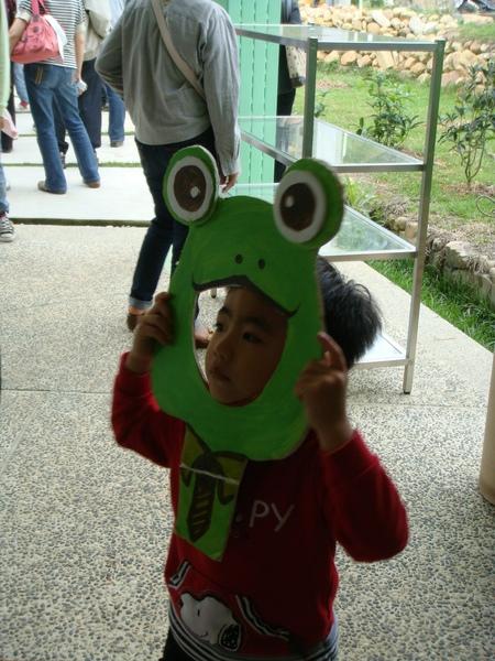 大青蛙.JPG