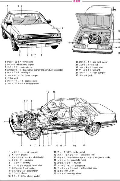 自動車.jpg