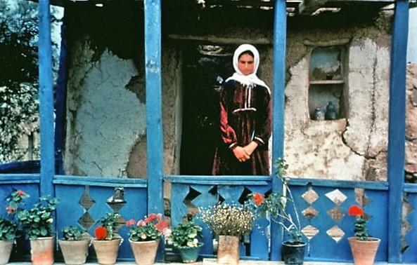 Through-the-Olive-Trees-Abbas-Kiarostani