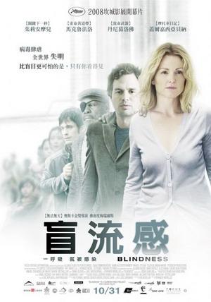 盲流感(2008).jpg