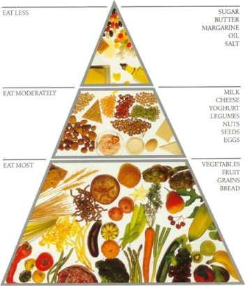 HealthyFoodPyramid.jpg