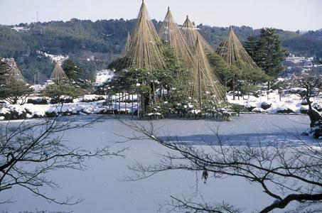 霞ヶ池と唐崎松・雪吊.jpg