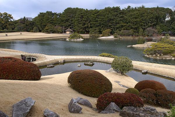 唯心山から沢の池を望む.jpg