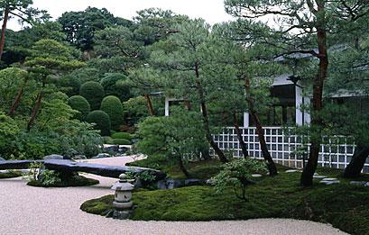 夏の苔庭.jpg