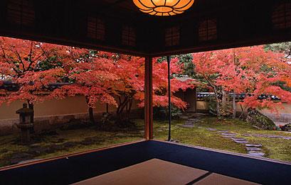 秋の寿立庵.jpg
