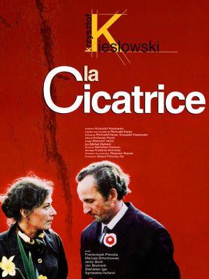 傷痕(1976).jpg