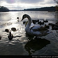 Woltersdorf 湖溿