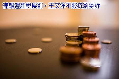 StockSnap_SDM03P88BO.jpg