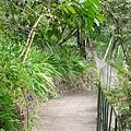 整座後山都是五里坡的花園