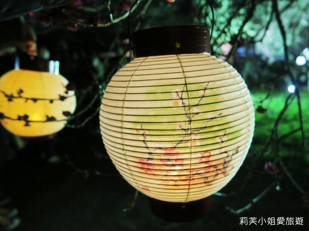 弘道館夜梅