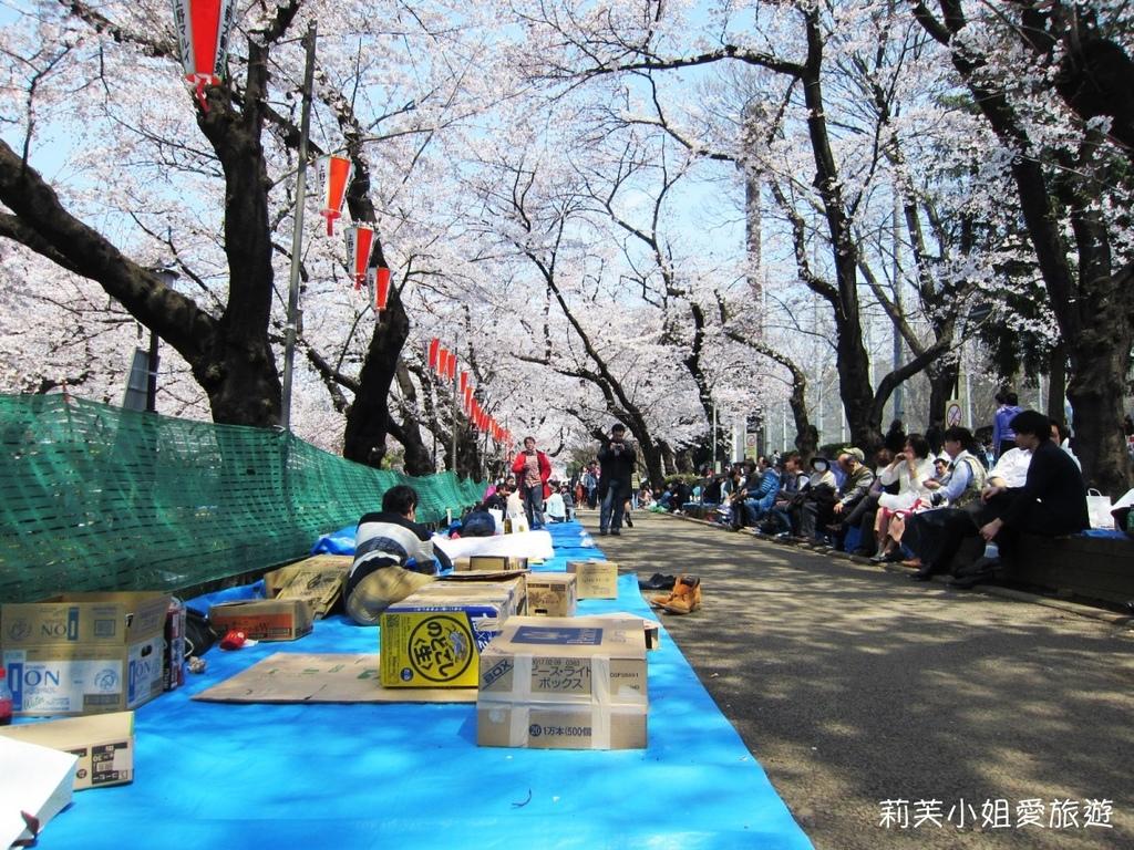 上野公園櫻花