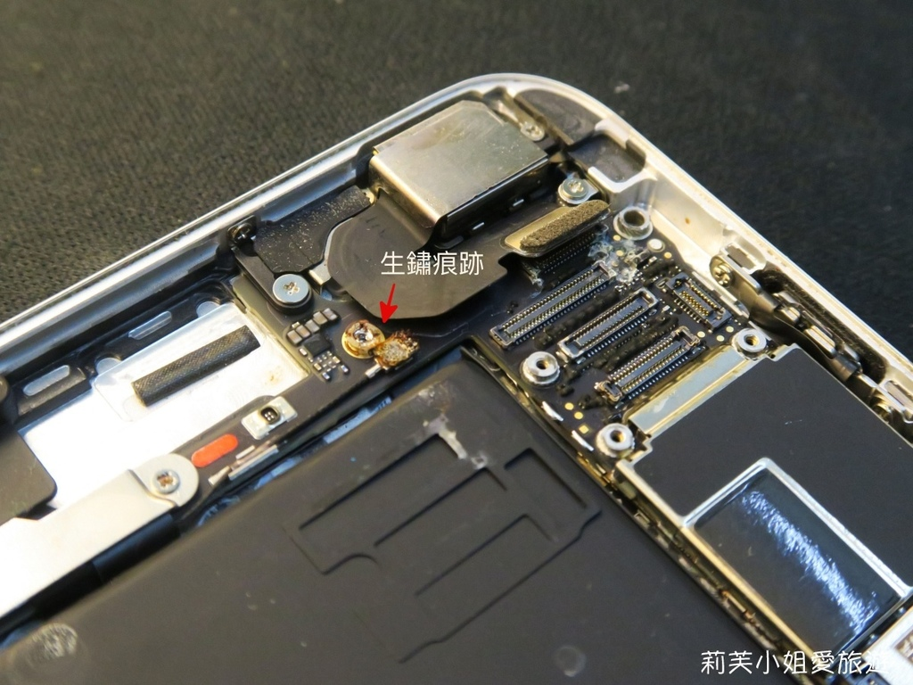 iphone 泡水