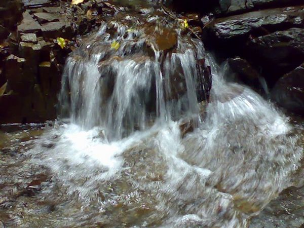 20061111556.jpg