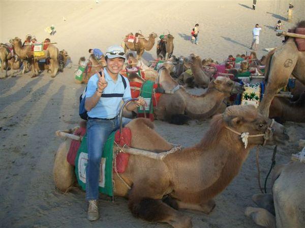 鳴沙山騎駱駝.JPG