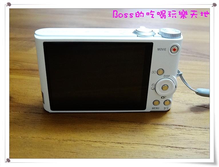 DSC02114.JPG