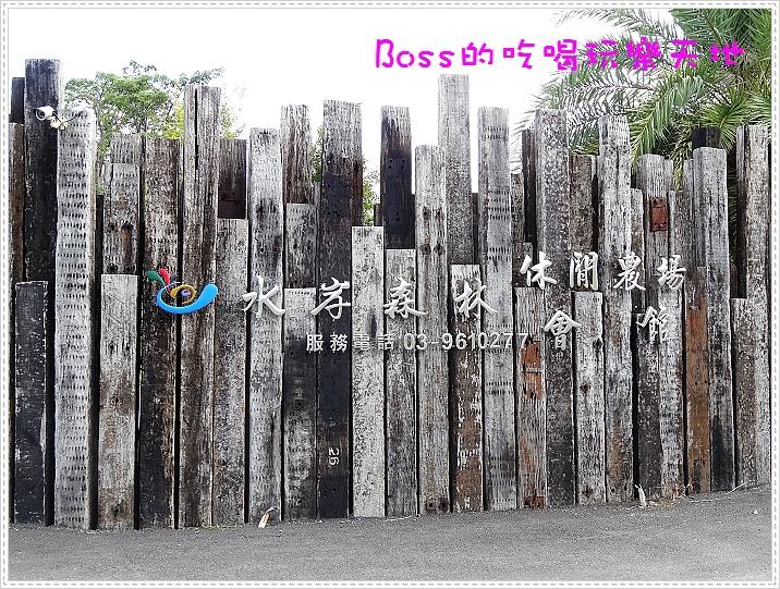 DSC01944.jpg