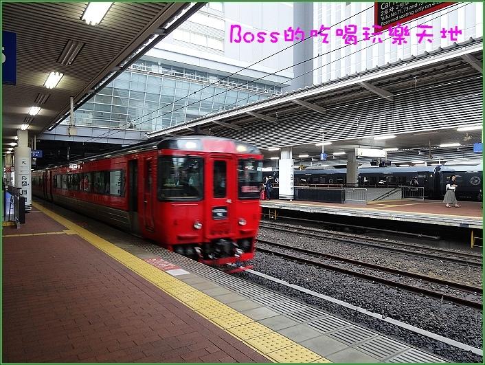 DSC05711.JPG