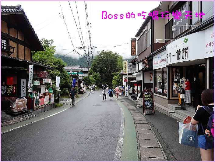 DSC05695.jpg