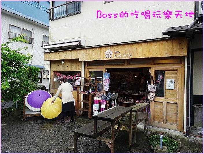 DSC05737.jpg