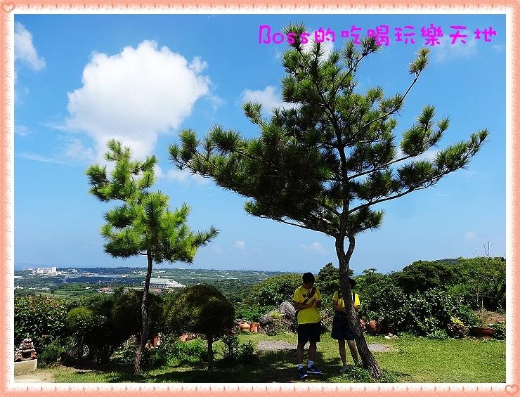 DSC08538.JPG