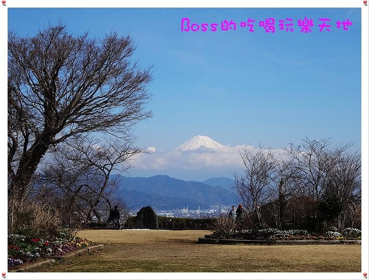 DSC00773.JPG