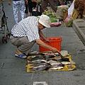 阿伯在擺不鮮的魚兒