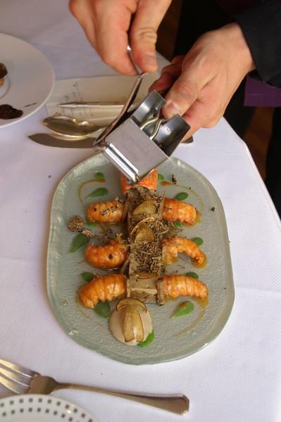 鳌蝦牛肝菇.JPG